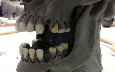 Einsätzen der Zähne bei der Modellation eines Totenkopfes